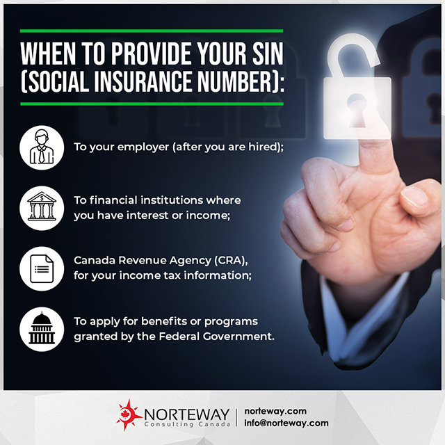 Newcomers Survival Guide: Vancouver   Norteway Consulting Canada